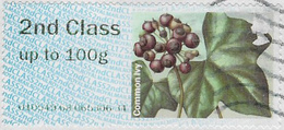 GB 2014 Winter Greenery 2nd Type 1 Used Code 010549 [32/161/32D] - Great Britain