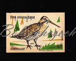 C02 CZECHOSLOVAKIA 1961 Live Beauty Of The Czechoslovak Socialist Republic - Eurasian Woodcock Scolopax Rusticola - Boites D'allumettes - Etiquettes