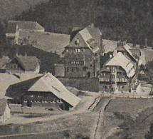 AK 0127  Feldberg - Feldberger Hof / Verlag Mayer & Schladerer  Um 1921 - Feldberg