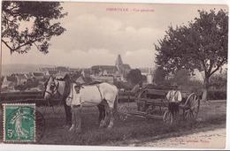 OMERVILLE-AGRICULTURE ET VUE GENERALE - France