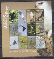 Tonga 2018 Birds Of Prey Falcons Etc Klb MNH - Owls