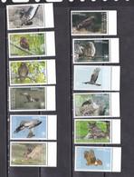 Rarotonga 2018 Birds Of Prey Falcons Owls Set Of 12v MNH - Owls