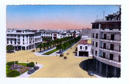 Maroc Rabat N°167 Vue Sur L'Avenue Lyautey En 1952 Voir ZOOM Maroc Matin Peugeot 202 Autos Anciennes VOIR TIMBRE - Rabat