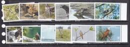 Aitutaki 2018 Birds Of Prey Falcons  Set Of 12v MNH - Owls