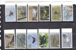 Tonga 2018 Birds Of Prey Falcons  Set Of 12v MNH - Owls