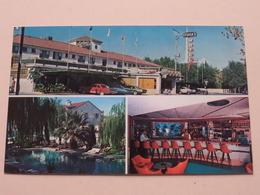 Hotel SYLVIA'S ( Roberto Studio) Anno 19?? ( Zie/See Photo ) ! - Mexique