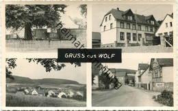 Wolf Kreis Büdingen - Foto-AK - Other