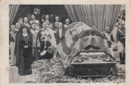 Old Postcard Funeraliile Reginei Maria - Romania