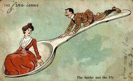 THE SPIDER AND THE FLY - Humor