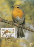 Carte Maximum - Oiseaux - Isle Of Man - 1988 - Passeri