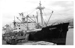 """¤¤  -  Cliché Du Bateau De Commerce """" BEGONIA """"  -  Cargo -   Voir Description   -  ¤¤ - Commerce"""