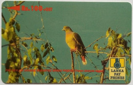 37SRLD  Green Breasted Pigeon  100 Rps - Sri Lanka (Ceylon)