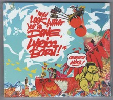 CD 16 TITRES NOW LOOK WHAT YOU'VE DONE, LYRICS BORN GREATEST HITS ! NEUF SOUS BLISTER & TRèS RARE - Rap & Hip Hop