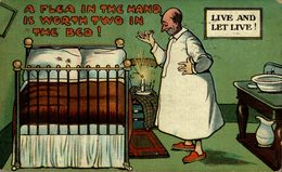A FLEA IN THE HANDE IS WORTH TWO IN THE BED! - Humor