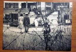 COPPIA  IMMAGINE DA CARTACEO D'EPOCA PICTURE OF VINTAGE PAPER - Immagine Tagliata