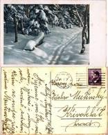 BuM Card Praha > Krivoklat ... D136 - Bohemia & Moravia