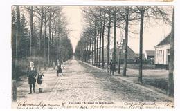 B-6989   BRASSCHAET : Vue Dans L'Avenue De La Chapelle - Brasschaat