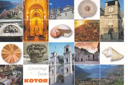 MONTENEGRO -  KOTOR - MULTIVUES - DIVERS ASPECTS DE LA VILLE - COQUILLAGES - Montenegro