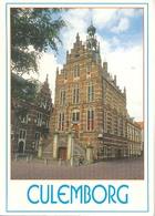 Culemborg, Stadhuis   (Een Raster Op De Kaart Is Veroorzaakt Door Het Scannen;de Afbeelding Is Helder) - Culemborg