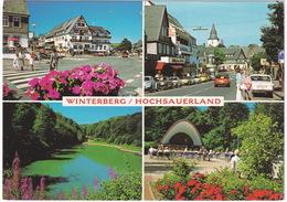 Winterberg: FORD TAUNUS P7 TURNIER, OPEL ASCONA, FORD GRANADA, RENAULT FLORIDE, VW DERBY & KÄFER/COX - Toerisme