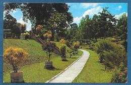 SINGAPORE SEREMBAN LAKE GARDEN 1964 - Singapore