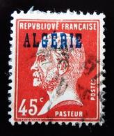 1924 Algérie Yt 22 Type Pasteur .Oblitéré Used - Oblitérés
