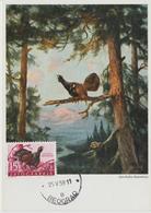 Yougoslavie Carte Maximum Oiseaux 1958 Coq De Bruyère 745 - Cartes-maximum