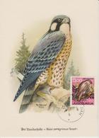 Yougoslavie Carte Maximum Oiseaux 1967 Faucon 1125 - Cartes-maximum