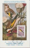 Yougoslavie Carte Maximum Oiseaux 1968 Chardonneret 1178 - Cartes-maximum