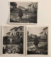 Lot De 3 Photos. Villa à Biarritz. - Lieux