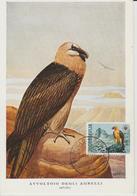 Yougoslavie Carte Maximum Oiseaux 1970 Gypaete 1292 - Cartes-maximum