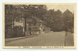 Cappellen - Kapellen   *   Yzerenweglaan - Avenue Du Chemin De Fer (Hoelen) - Kapellen