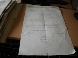 Ujvideki Keruleti Munkasbiztosito Penztar  Ujvidek 1913 - Historical Documents