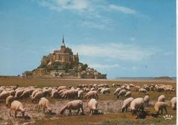 LE MONT ST MICHEL LES PRES SALES - Le Mont Saint Michel