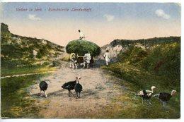 333. ROUMANIE.VEDERE LA TARA. RUMANISCHE LANDSHAFT BUCAREST 1919 - Rumänien