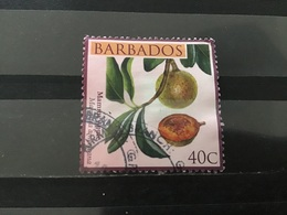 Barbados - Vruchten (40) 2011 - Barbados (1966-...)