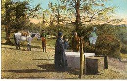 337. BULGARIE. LA TOMBE DE HADJI DIMITER A BOZLAUDJA. KNIAJEVO 1919 - Bulgarien
