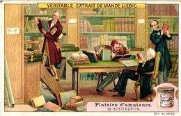 0968 Liebig 6 Cards- C1909  Hobbies-Plaisirs D'Amateurs-Bibliophile-oiseaux-Fleurs-Papillons-Musiciens-Antique - Liebig