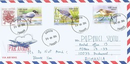Vietnam 2014 Saigon Saunder's Gull Spoon-billed Sandpiper Calidris Pygmaeus Nordmann's Greenshank Tringa Guttifer Cover - Seagulls
