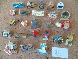 LOT DE 25 PIN'S  ( Lot N° 12 ) - Pin's