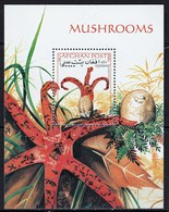 Feuille Neuf** D' Afghanistan Champignon Anthutus Archeri - Pilze