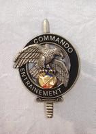 Insigne Commando Entrainement.Très Bon état. - Militaria