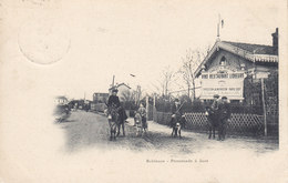 CPA (92) Hauts De Seine LE PLESSIS ROBINSON Une Promenade à Anes Circulées Timbrées 1902 - Le Plessis Robinson