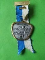 SVIZZERA  Marcia Regensberg 3° Classificato 1973 - Medaillen & Ehrenzeichen