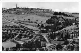 Jordanie / 01 - Garden Of Gethsemane And Mount Of Olives - Jordanie