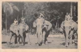 Malaya - Topo / 10 - Borneo - Beau Cliché - Malaysia