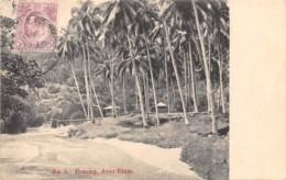 Malaya - Topo / 12 - Penang - Ayer Etam - Belle Oblitération - Malaysia