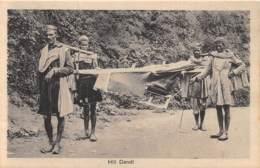 Népal / 01 - Hill Dandi - Népal