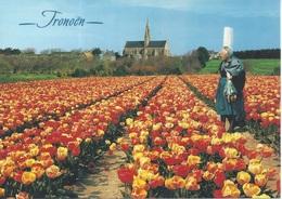 CPM  France    29 Finistère  Saint Jean Trolimon  Tronoën  Une Bigoudène Parmi Les Tulipes - Saint-Jean-Trolimon