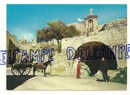 Malte. Gozo. Un Vieux Lavoir Public Sur La Route De Xlendi. Copyright: Cathedral Library Sliema - Malta
